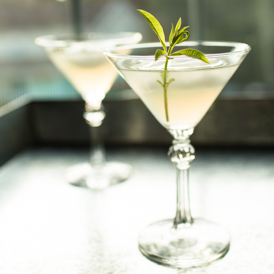 Lemon Verbena Gimlet Cocktail | Grey is the New Black