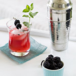 Blackberry Mint Ginger Fizz