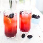 Blackberry Fence Hopper